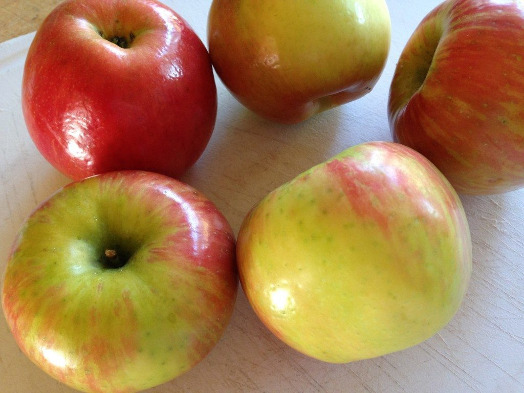 Apple Studel Recipe